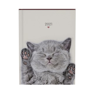Agenda 2022 my favourite friends cats