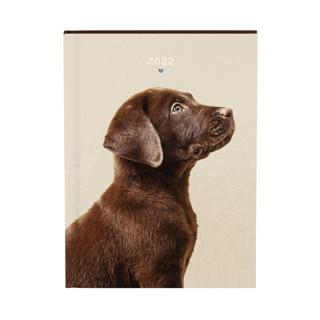 Agenda 2022 honden bruin