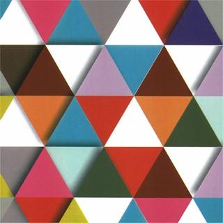 Apparaatrol driehoekjes 200mx50cm