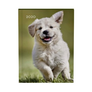 Agenda 2020 Lannoo My favourite friends dog groen